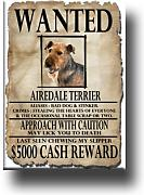 Airedale Terrier Wanted imán para nevera
