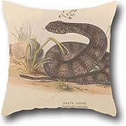 Artistdecor Fierce Terrible Snake 20x30 Inch Pillow Case Throw Cushion Covers ,best For Sofa,relatives,divan,bedding,adults,relatives 20 X 30 Inches / 50 By 75 Cm(both Sides)