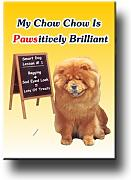 Chow Chow Pawsitively brillante imán para nevera
