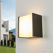 Aplique de pared exterior LED Guacamayo