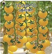 ASTONISH Seeds: Mix: 100pcs púrpura Tomates