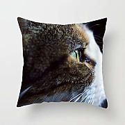 N\A Kitten Cat Eyes Throw Pillow Cover Square