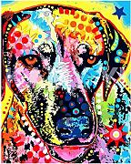 VFDGB Animal Multicolor Perro DIY Pintura Digital